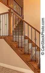 vertical, moquetté, rampe, cadre, métal, nouveau, bois, balustrade, maison, escalier, intérieur, vide