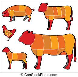 viande coupe