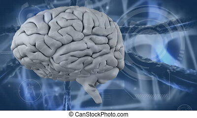 vidéo, cerveau, humain, numérique, 4k, engendré
