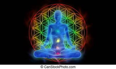 vie, fleur, activation, symbole, esprit, méditation, chakra, aura, éclaircissement