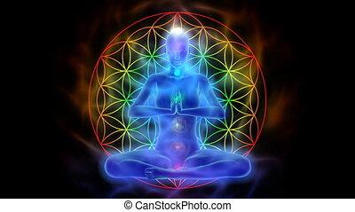 vie, fleur, yoga, symbole, méditation