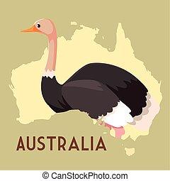 vie sauvage, animal, australien, carte, autruche