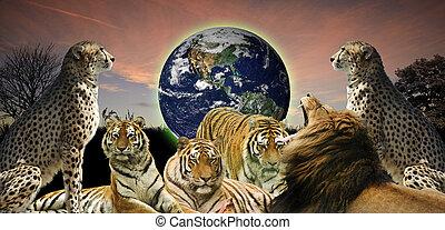 vie sauvage, concept, humains, image, puits, il, créatif, planète, belongs, les, animal, protéger, la terre