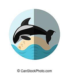 vie sauvage, marin, tueur, espèce, baleine, écusson, ombre