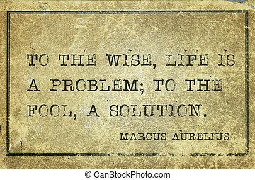 vie, solution, maurelius