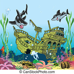 vie sous-marine, mer