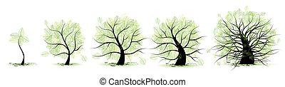 vie, vieux, tree:, âge, jeunesse, âge adulte, enfance, étapes, adolescence