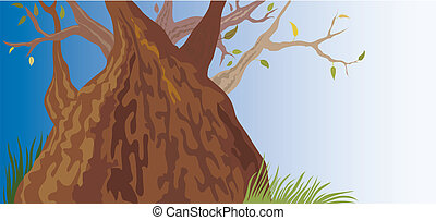 vieil arbre, (vector)