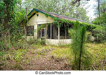 vieux, floride, abandonnés, maison