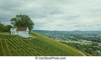 vignoble, allemagne, prise vue aérienne, holzberg