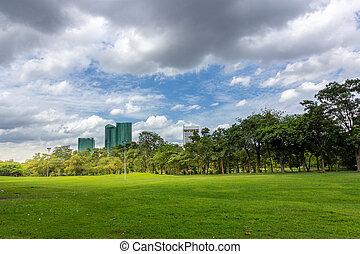 ville, bâtiments, ciel, parc, contre, champ, vert, nuageux, herbe