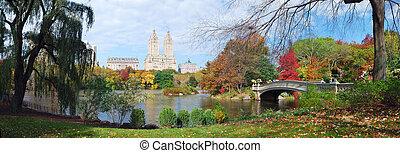 ville, central, panorama, parc, automne, york, nouveau