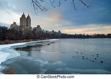 ville, hiver, parc central, york, nouveau