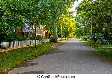 ville, lignes, arbres, rue, petit, étroit