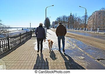 ville, marche, femme, chien, homme