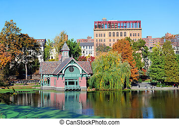 ville, parc central, automne, york, nouveau