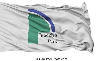 ville, parc national, minnesota, isolé, onduler, brooklyn, drapeau