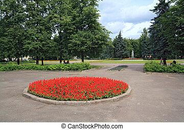 ville, pelouse, parc