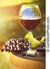 vin, closeup, raisins rouges, glasse