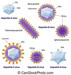 virus, eps10, hépatite, comparaison