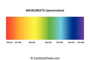 visible, spectre, radiation, lumière, longueur onde, prisme, électromagnétique, ligne, couleur