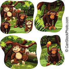 vivant, forêt, profond, singes