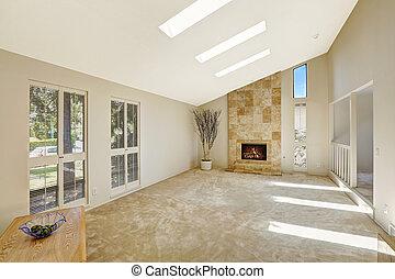 vivant, plafond, salle, beautitful, skylights., voûté, vide