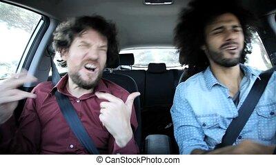 voiture, amis, deux, heureux