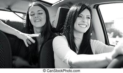 voiture, conversation, noir, sourire, femmes, blanc, heureux