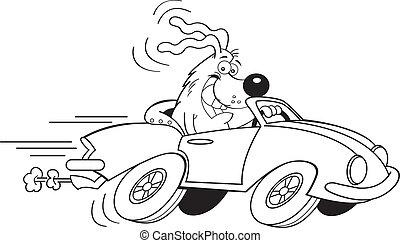 voiture, dessin animé, conduite, chien