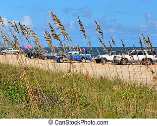 voitures, plage, garé