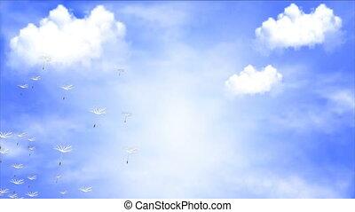 vol ciel, nuages, contre, pissenlit