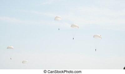 voler, ciel, groupe, parachutistes, blanc, parachutes