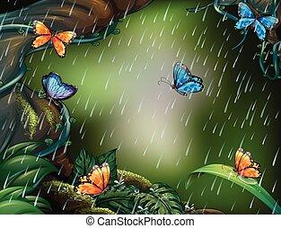 voler, scène, pluie, papillons, profond, forêt