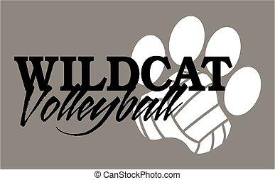 volley-ball, wildcat