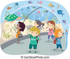 voyage, aquarium