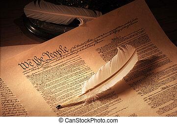 voyante, constitution, nous