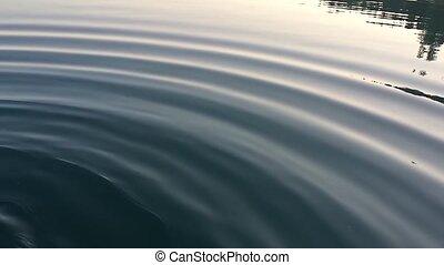 vrai, eau, vagues