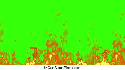 vrai, flammes, brûler, écran, brulure, chroma, seamless, arrière-plan vert, clã©, prêt, boucle, mouvement