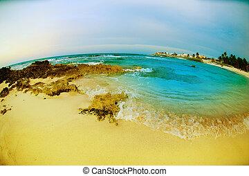 vue., fisheye, mujeres, mexique, marine, isla