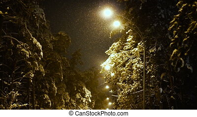 winter., rue, hiver, nuit