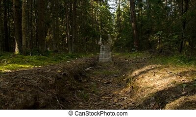 woods., woman., effrayant, 21, fantôme