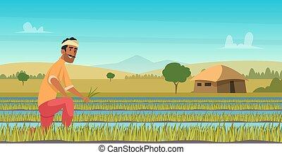 working., récolte, paysan, champ, fond, dessin animé, style, indien, agriculture, vecteur, asie