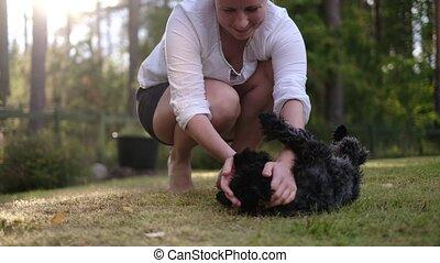 yard, dame a peau noire , petit, dos, jouer, schnauzer, mignon