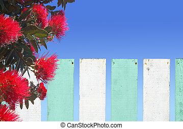 zélande, barrière, fleur, sur, bois, pohutukawa, nouveau, fleurs