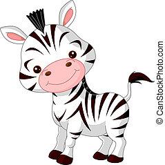 zebra, amusement, zoo.