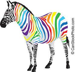 zebra., différent, bandes, colors.