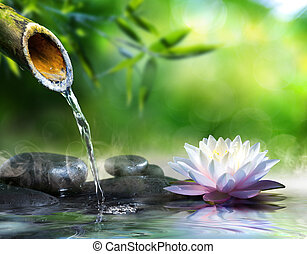 zen, masage, jardin, pierres